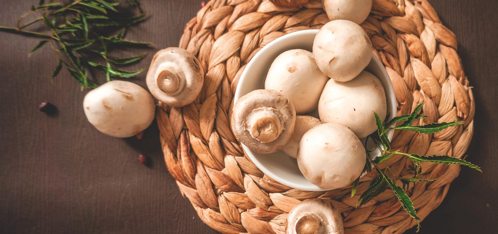 Jakie grzyby można uprawiać cały rok?